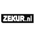 logo_zekur__